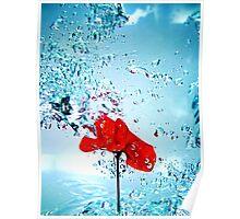 Primary splash Poster