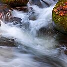 Smoky Mtn stream - 425 by   Paul W. Faust