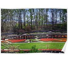 Biltmore Gardens Wide Angle Poster