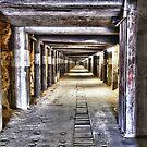 Wolfenstein by Ian Berry