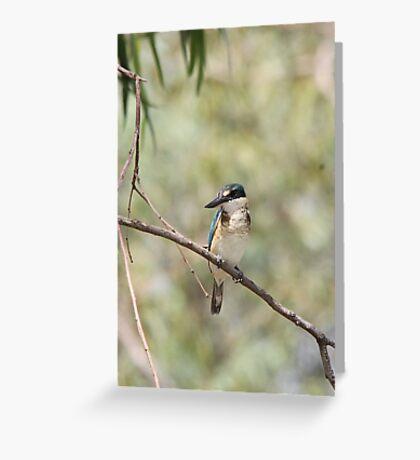 Sacred Kigfisher Greeting Card