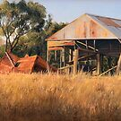 Golden Years - Kelly Road, Williamsdale, ACT, Australia. (2009) by Martin Lomé