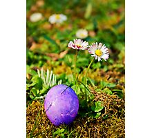 The Purple Egg Photographic Print