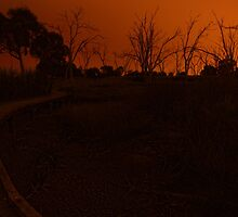 Fiery night by the dried beds of the wetlands by scott Berry