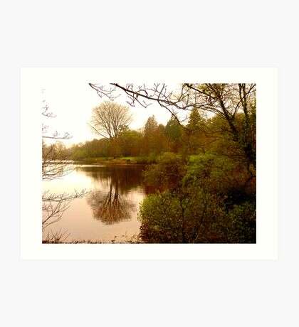 Lake Gartan Art Print