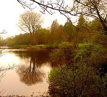 Lake Gartan by Fara