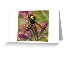 PAPER WASP Greeting Card
