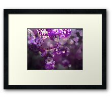 The Colour Purple Framed Print