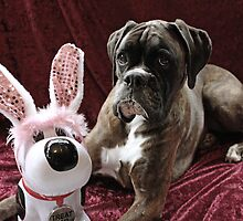 You Can't Fool Me... It's Not The Easter Bunny by Evita