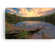 The Setting Sun Canvas Print