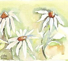 Shasta Daisies for Mother's Day by Maree  Clarkson