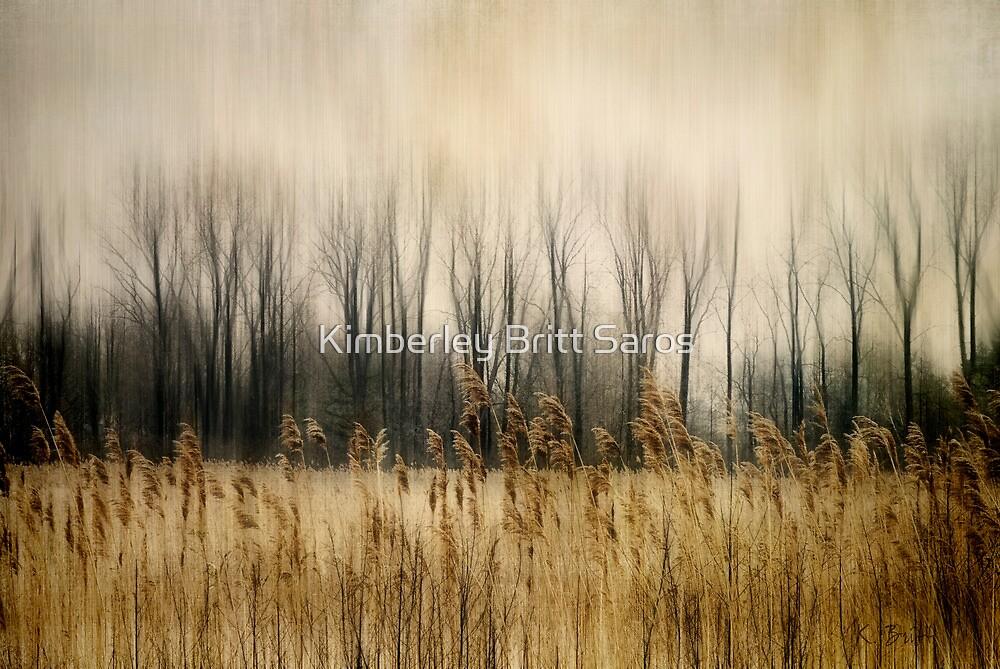 Marsh Edge by KBritt