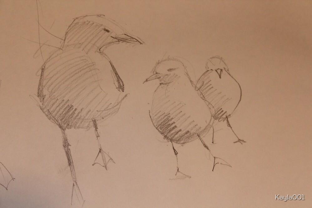 Three Gulls by Kayla001