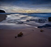 Turimetta Blue by Ian English