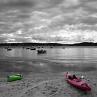 Rose Bay Kayaks by Kezzarama