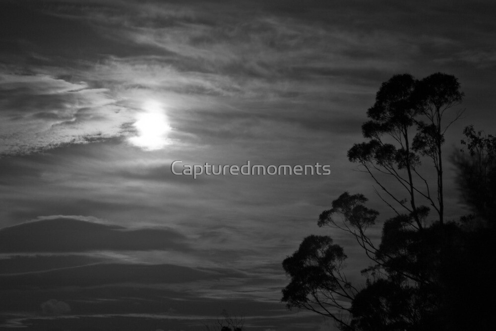 Full moon rising by Coreena Vieth