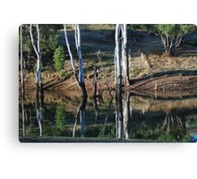 A reflection, mirror on life! Canvas Print