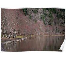 Deer Lake Poster