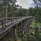 Trestle Bridge by Shari Mattox