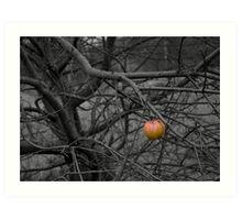 Last Apple Art Print