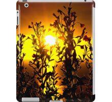 wild atlantic way sunset with flowers iPad Case/Skin