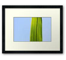 Zen Moment Framed Print