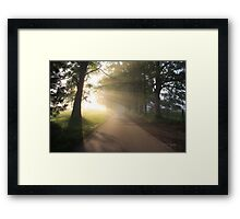 A Soft Summer Morning on the Loop Road Framed Print