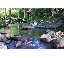 a creek in the valley ... Photographic Print