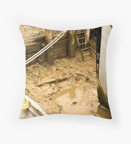 Mud Throw Pillow