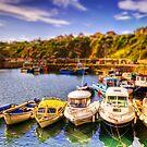 Crail Harbour (HDR Tilt Shift) by Don Alexander Lumsden (Echo7)