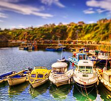 Crail Harbour (HDR Tilt Shift) by Don Alexander Lumsden (Echo7)