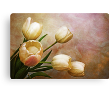 romantic spring Canvas Print