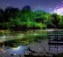 Magic Night © by Dawn M. Becker
