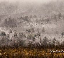 Surrounded by Snow in Cades Cove by Kellie Sharpe