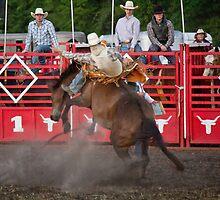 Rodeo Cowboy the ride by Brenda  Meeks