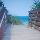 Boardwalk to the Beach by Henry Plumley