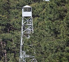 Watch tower in the swamp by Brenda  Meeks