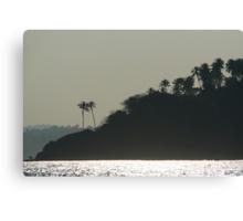 Palm Trees on Monkey Island Canvas Print