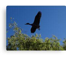 High-Flyer - Sobrevolador Canvas Print