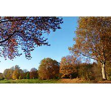 Pieces of Autumn #1 Photographic Print