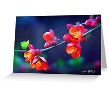 Painted Quince Blossoms Greeting Card