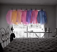 Ironing Adds Color to a Room by Wayne King