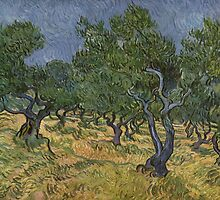 Olive Orchard by Vincent van Gogh by Robert Partridge