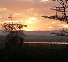 Early Rise over Lake Nakuru by mdench