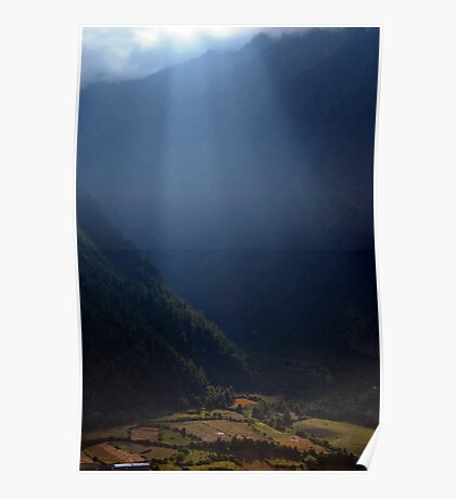 Fields Highlighted by Sunlight Pisang Poster