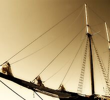 Tall Ship by Mary  Lane