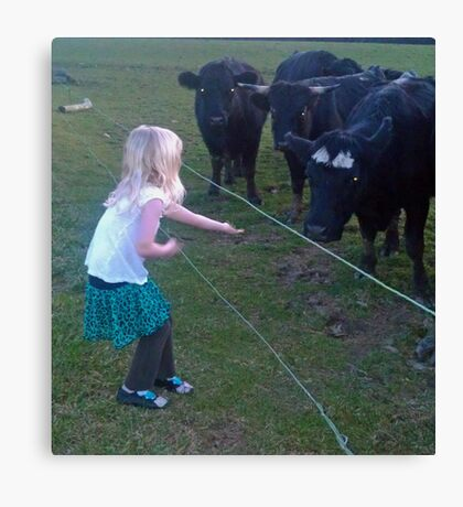 A Treat for the Cows Canvas Print