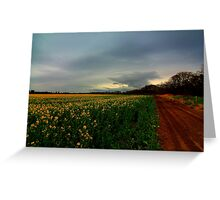 Walking Home along the Teesdale Way trail, North England. April Evening. Greeting Card