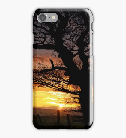 Sunset and Tree iPhone Case/Skin