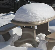 Snow on a Picnic Table by denisespictures
